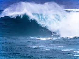 Athlete surfs wave in Vila Velha and wins Brazilian Gigantes Award